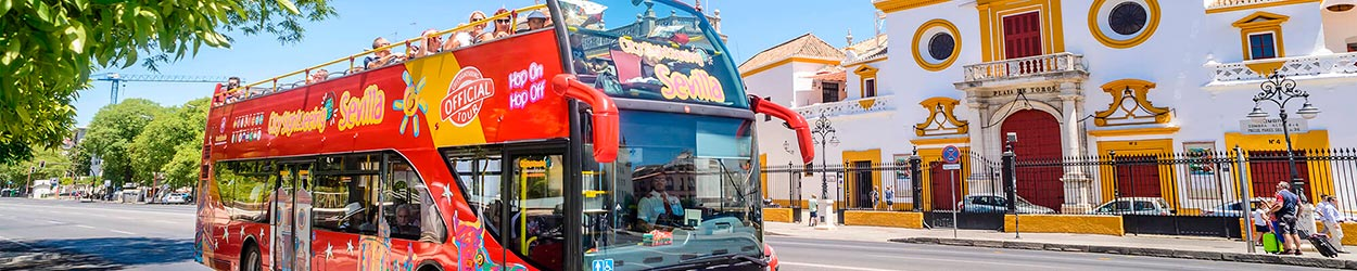 City Sightseeing Experience